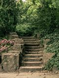 Old stone stairs in the park stock photography