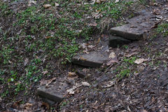 Old stone stairs in the park area Royalty Free Stock Photography