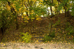 Old stone stairs in the park Stock Photo