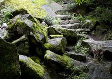 Old stone stairs Stock Photos