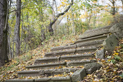 Old Stone Stairway in the Fall Stock Image