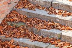 Old Stone Stairway Stock Photo