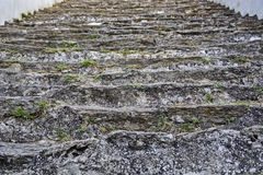 Old stone steps Royalty Free Stock Photo