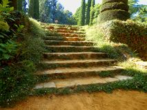 Old Stone Steps Stock Image