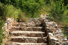 Old stone steps with green grass Royalty Free Stock Photos