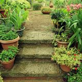 Old stone steps in small italian garden, decorated by flower pot royalty free stock photos