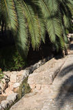 Old stone structure and palm leaves. Old arabic stone structure and palm leaves in Mallorca, Balearic islands, Spain Royalty Free Stock Photography
