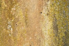 Old stone surface with yellow and green lichen Stock Photo