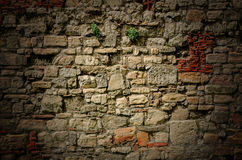 Free Old Stone Wall Background Stock Images - 43639314