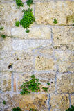 Old stone wall built of white stone Royalty Free Stock Photography