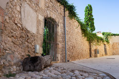 Old stone wall with closed door, street view Royalty Free Stock Photos