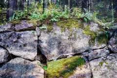 Old stone wall covered by moss and vegetation, Viborg, Russia Stock Images