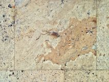Old stone wall decoration. Texture wallpaper background stock photo