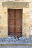 Old stone wall and door with cats in Greece. Greek cats in front of old wooden door with stone lintel and stone walls royalty free stock images