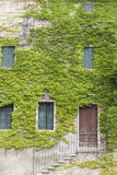 An old stone wall with a door, stairs, windows, overgrown with ivy. Italian village Stock Photo