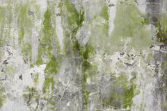 Old stone wall with greenish plaster Royalty Free Stock Photos