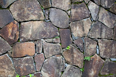 Old stone wall with leaves and moss Royalty Free Stock Images