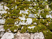 Old stone wall with moss Stock Photos
