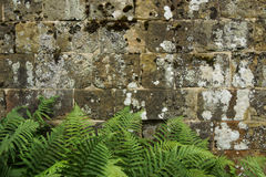 An Old Stone Wall Texture / Background Stock Photos