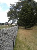 An old stone wall between two fields. The view along an old stone wall which splits the cattle field from the sheep field on an old farm. There are some large Royalty Free Stock Photography