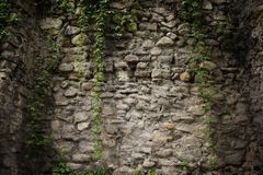 Old stone walls fortress with green ivy.Real texture of old stone bricks. Quality photo background of brickwork. Good for 3D works stock image
