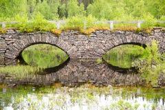 Old stonebridge. Old overgrown  stonebridge with trees all around Stock Images