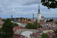 Old stoned streets, houses and red roofs of old Tallinn in the summer day. Stock Images