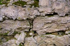 Old stones covered with moss, cobwebs, mushrooms.  Royalty Free Stock Photos