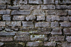 Old stones wall. Covered with moss and vegetation Royalty Free Stock Photo