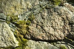 Old stonework covered with moss, stone wall Stock Photo