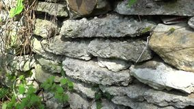 Old stonework in the forest. Forester`s house