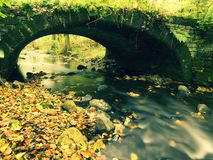 Old stony bridge above autumn river. Water of stream full of colorful leaves, leaves on gravel, blue blurred water is running over Stock Images