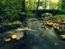Old stony bridge. Autumn river. Water of stream full of colorful leaves, leaves on gravel, blue blurred water. Stock Image