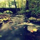 Old stony bridge. Autumn river. Water of stream full of colorful leaves, leaves on gravel, blue blurred water. Stock Photos