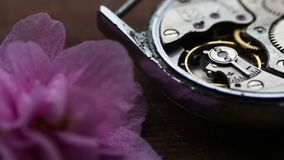 Old stopwatch mechanism next to a gently pink violet flower. Old Stopwatch Next to a gently pink violet flower, Clock Gears Mechanism.Inside of watch mechanism stock video