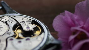 Old stopwatch mechanism next to a gently pink violet flower. Old Stopwatch Next to a gently pink violet flower, Clock Gears Mechanism.Inside of watch mechanism stock video footage