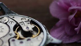 Old stopwatch mechanism next to a gently pink violet flower. Old Stopwatch Next to a gently pink violet flower, Clock Gears Mechanism.Inside of watch mechanism stock footage