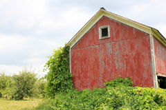 Old storage barn in the country Stock Photos