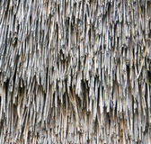 Old straw texture. Royalty Free Stock Photo