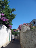 Old street. Old mediterranean street,picture taken on Losinj island-Croatia stock images