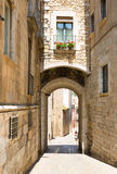 Old  street of european city.  Girona Stock Images
