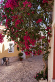 Old street with flowers in Ferragudo Algarve stock photography
