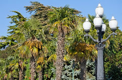 Old street lamp in Yalta Royalty Free Stock Photos