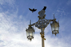 Old street light Stock Images
