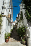 Old street of Marbella. Old street of Marbella full of plants and white buildings with sunny blue sky Stock Images