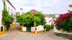 Old street in Obidos, Portugal. Old street in Obidos, Portugal Royalty Free Stock Images
