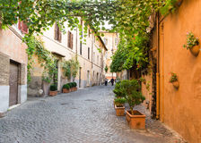 Old street in Trastevere in Rome Royalty Free Stock Photo