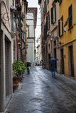 Old streets of Lucca, Italy Stock Images