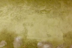 Old stucco texture Stock Images