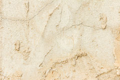 Old stucco wall background or texture.  Stock Images